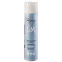 Shampooing Hagerty aerosol 600ML